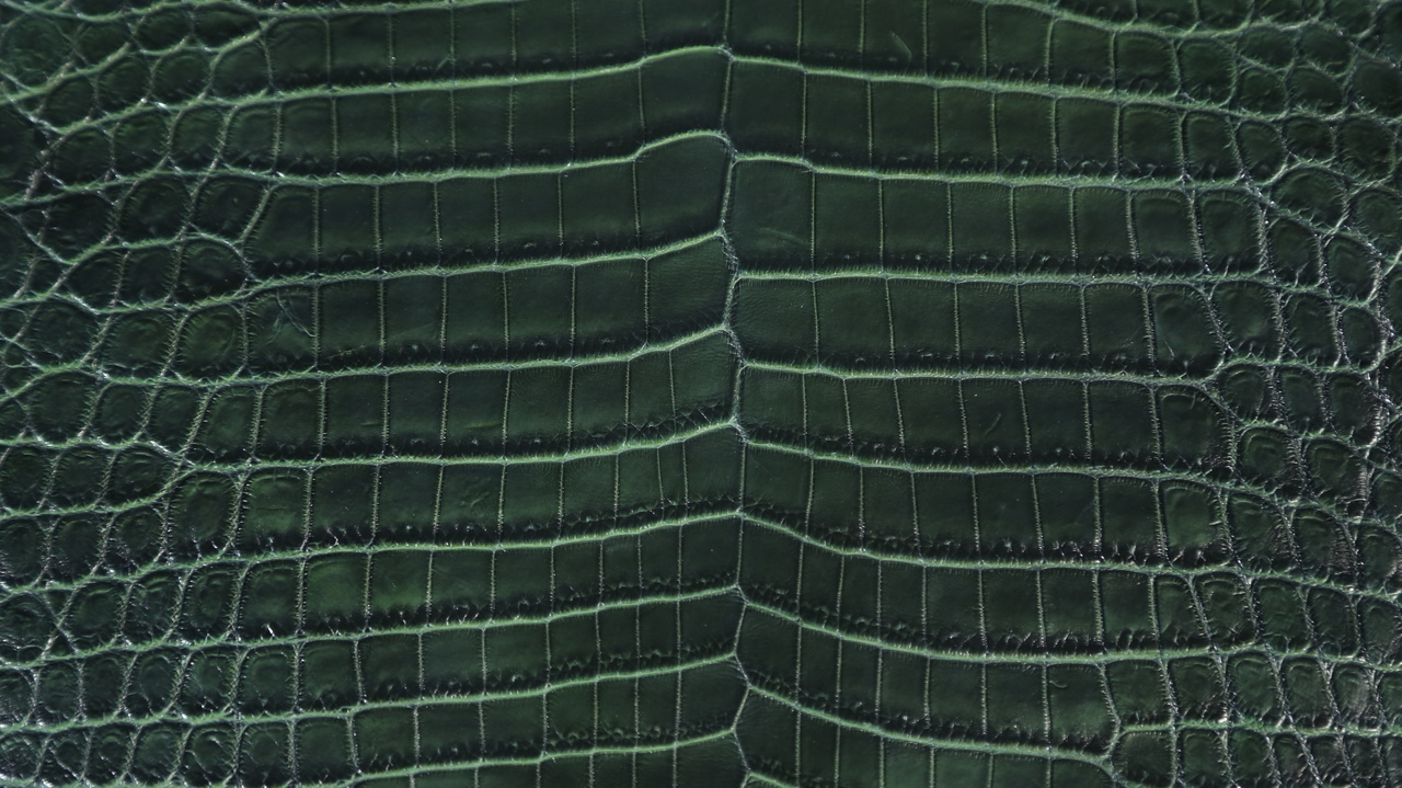 Nile Crocodile - Matte Waxy - Two Tone Emerald Green & Lime Green Under Scales