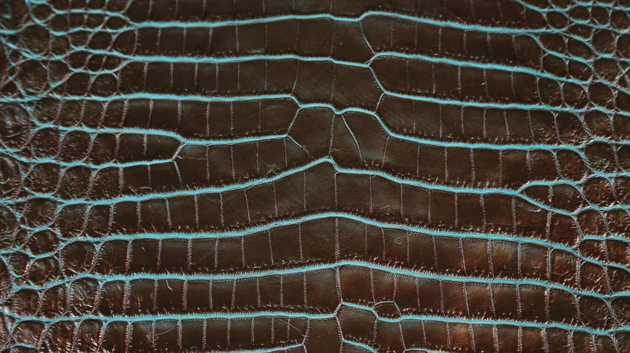 Nile Crocodile - Matte Waxy - Two Tone Bronze Base & Turquoise Under Scales