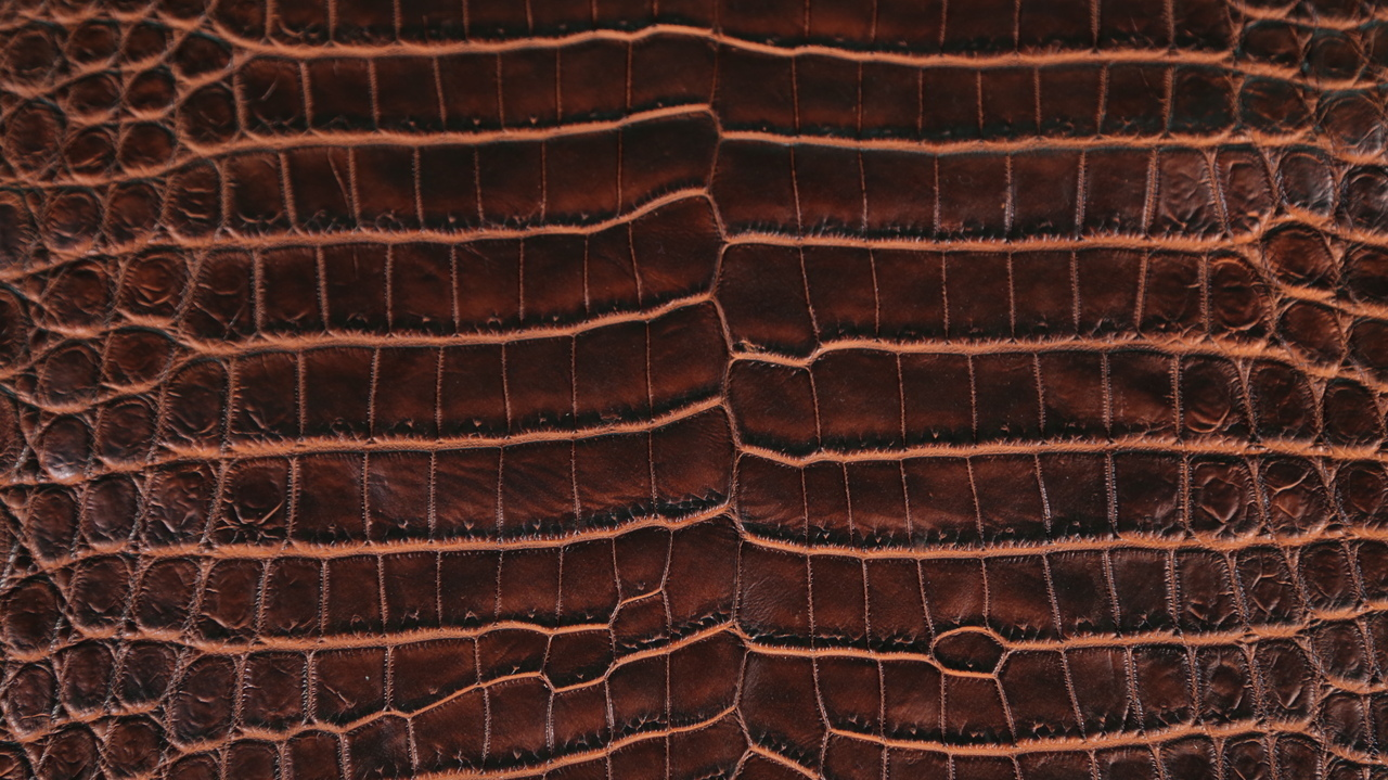 Nile Crocodile - Matte Waxy Two Tone - Chestnut Base & Cognac Under Scales