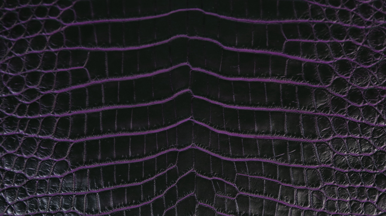 Nile Crocodile - Matte Waxy Two Tone - Charcoal Base & Purple Under Scales