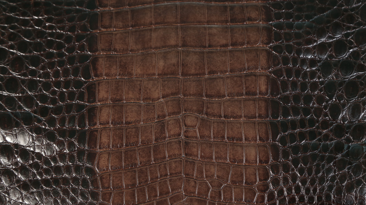 Freshwater Crocodile - Matte Waxy - Brown - Ombré