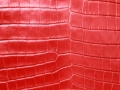 Genuine Crocodile Belly Skin - Matte Finish in Red