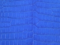 Nile Crocodile - Matte Waxy - Electric Blue